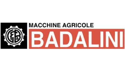 badalini logo - Главная