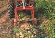 Делікатний картоплекопач Checchi & Magli SP50V