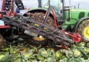 Комбайн для збору капусти Vanhoucke Cabbage Harvester